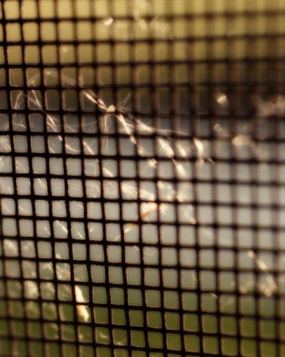 Robert Santafede Screen Shot