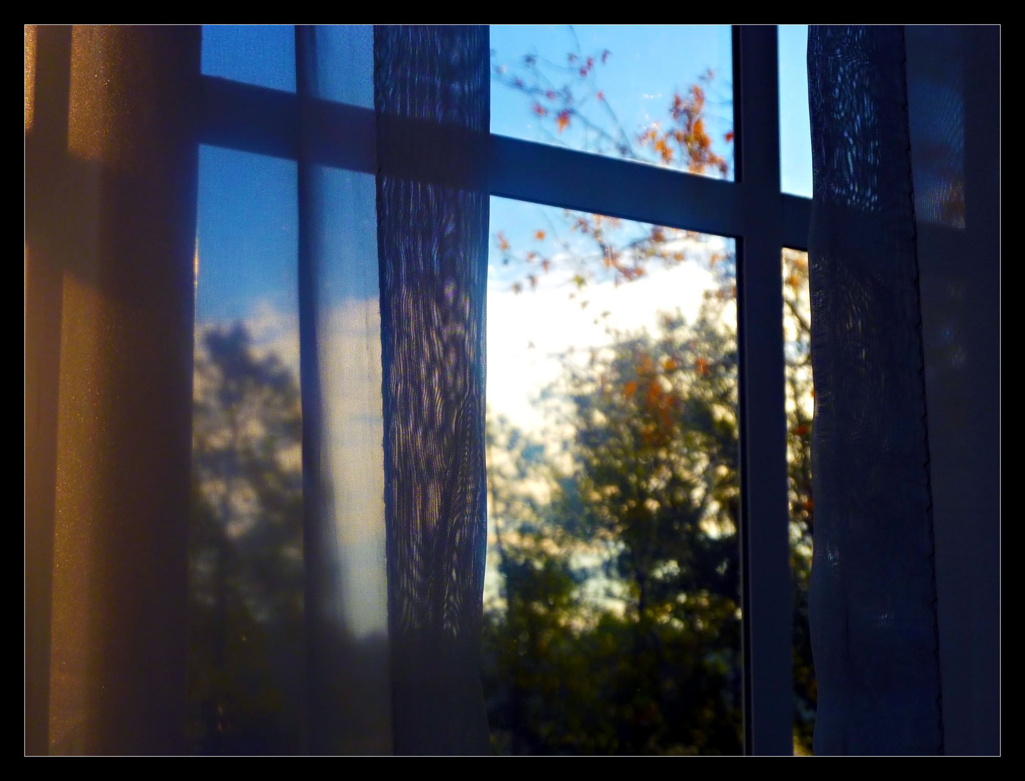 Window Robert Santafede Photography