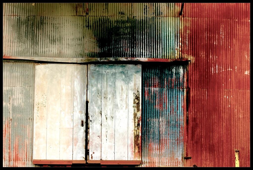 """Shell Shock"" by Robert Santafede"