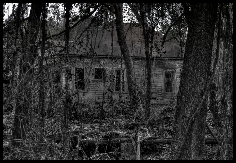 """""""The Hungry Ghost Part II"""", a black and white photograph by Robert Santafede"""